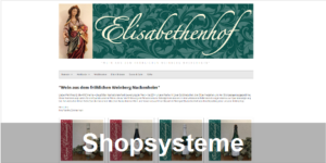 Shop-Systeme | E-Commerce